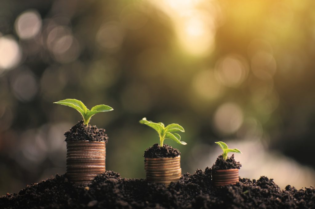 Coin with little sprout planting money to success
